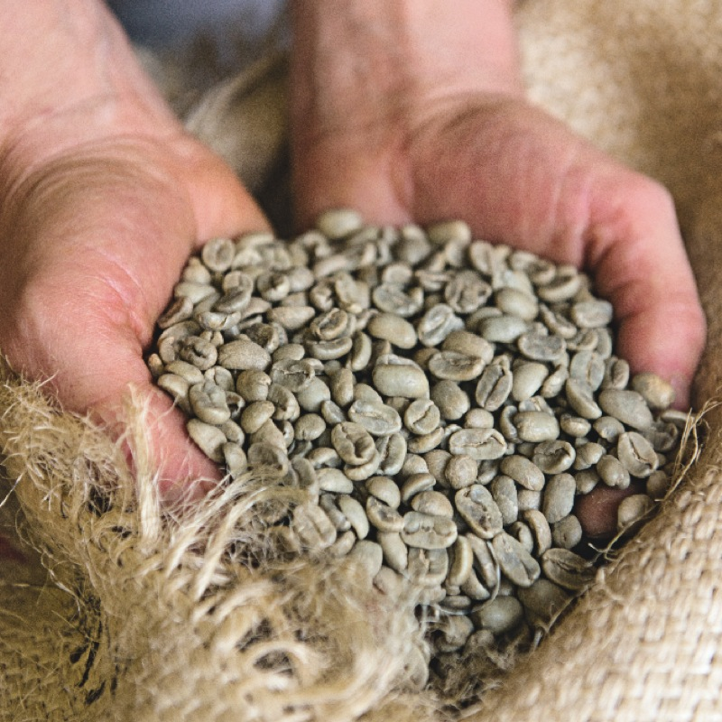 L'escargot d'or : une adresse pour les amoureux du café