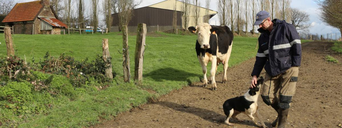 L'agriculture biologique, un choix payant pour lutter contre la crise ?