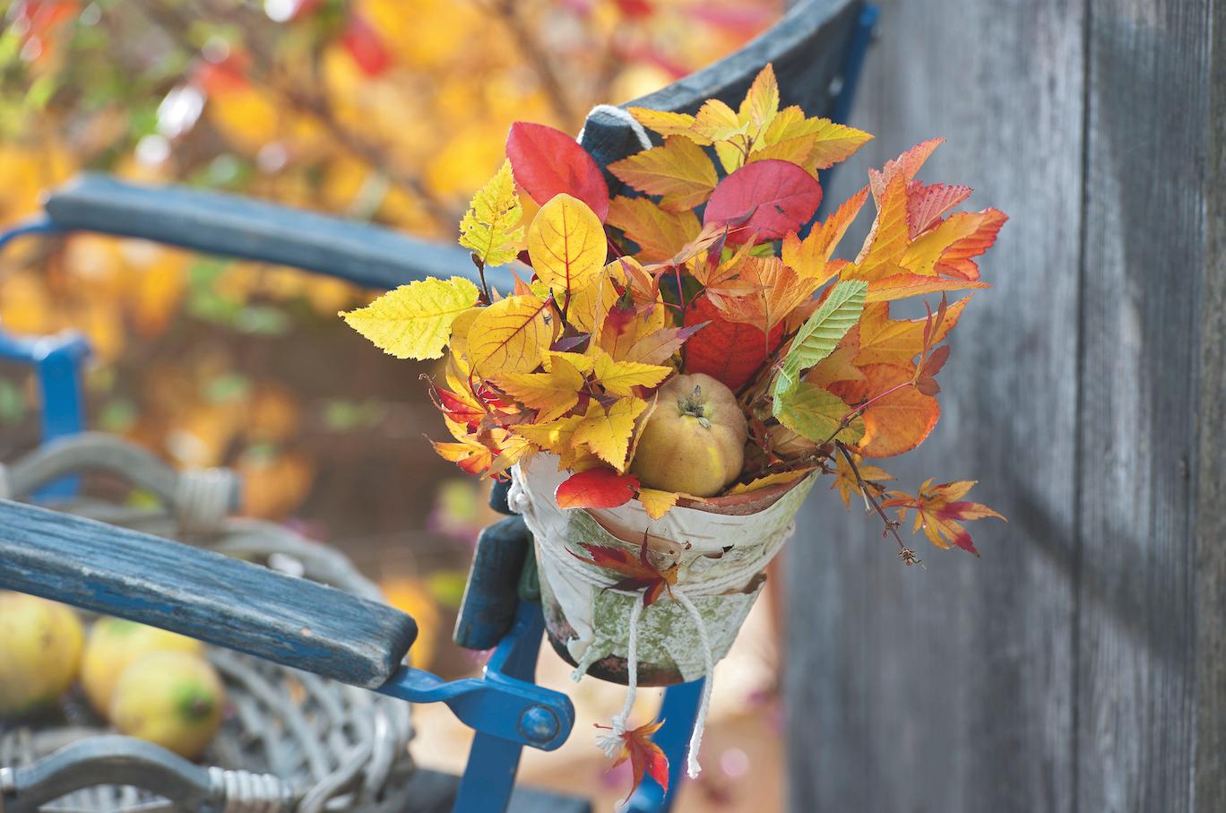 Deco D Automne Facile la déco d'automne, une touche de saison à croquer !