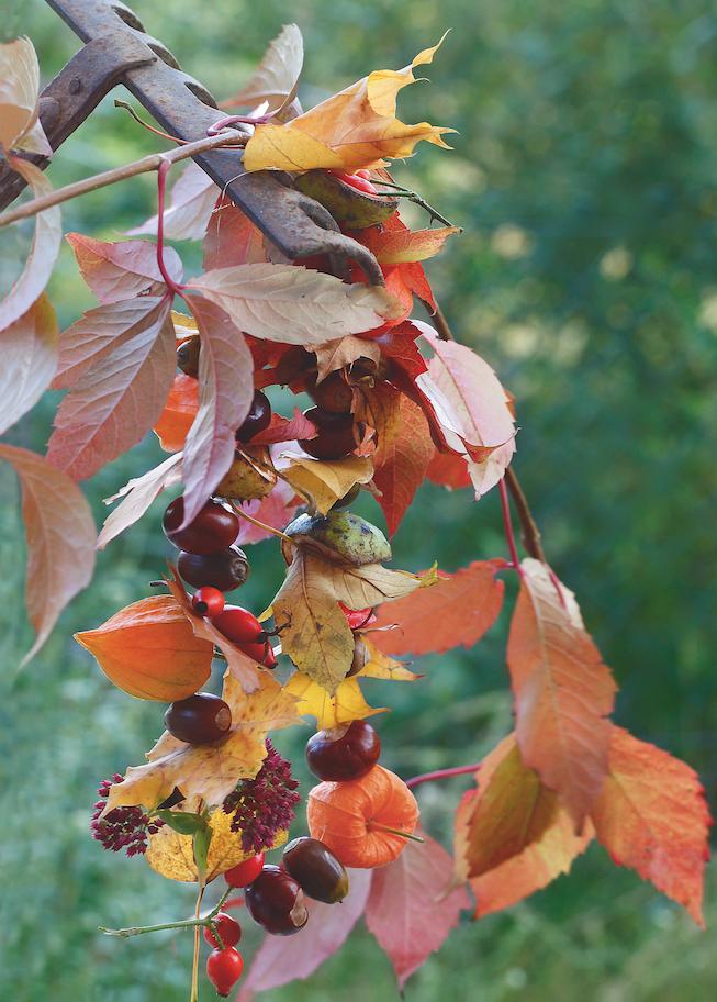 La déco d'automne