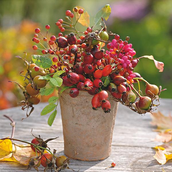 La déco d'automne, une touche de saison à croquer !