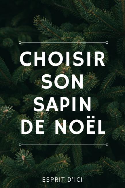 conseils pour bien choisir son sapin de Noël