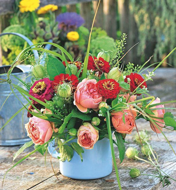 Zinnias : des bouquets pleins de gaieté