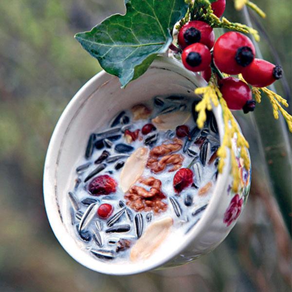 Fabriquer une mangeoire : 7 idées pour nourrir les oiseaux en hiver