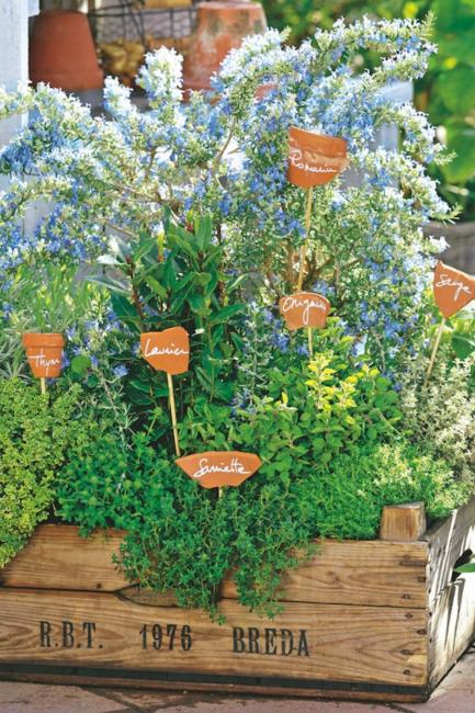 idée diy pour étiquettes de jardin