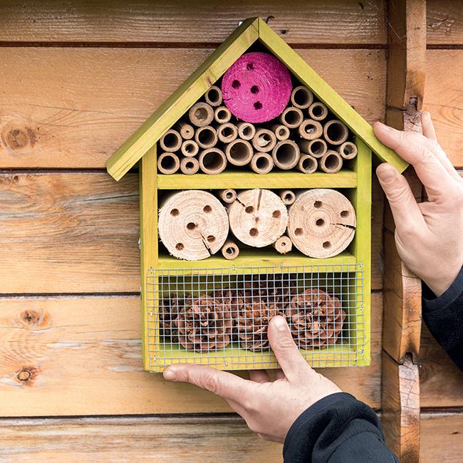 Tutoriel pour fabriquer un hôtel à insectes avec les enfants