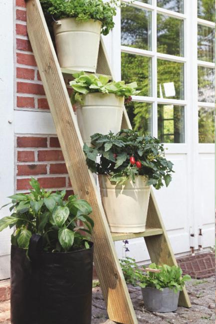 Astuces pour cultiver des légumes sur un balcon dans un potager urbain