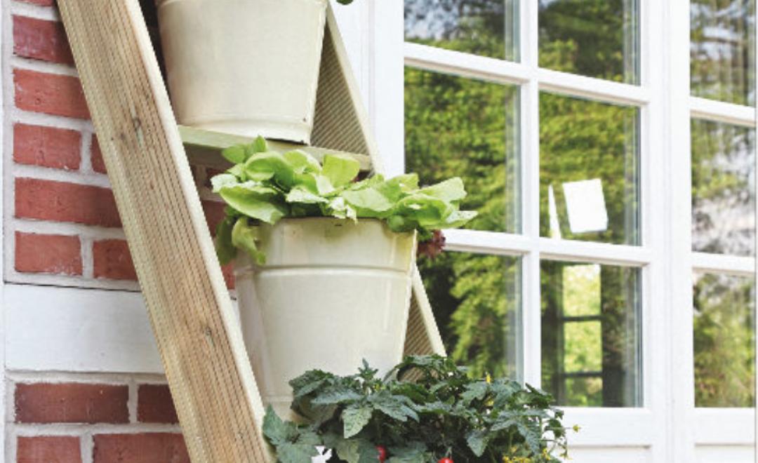 Potager urbain : 3 idées pour cultiver des légumes sur un balcon