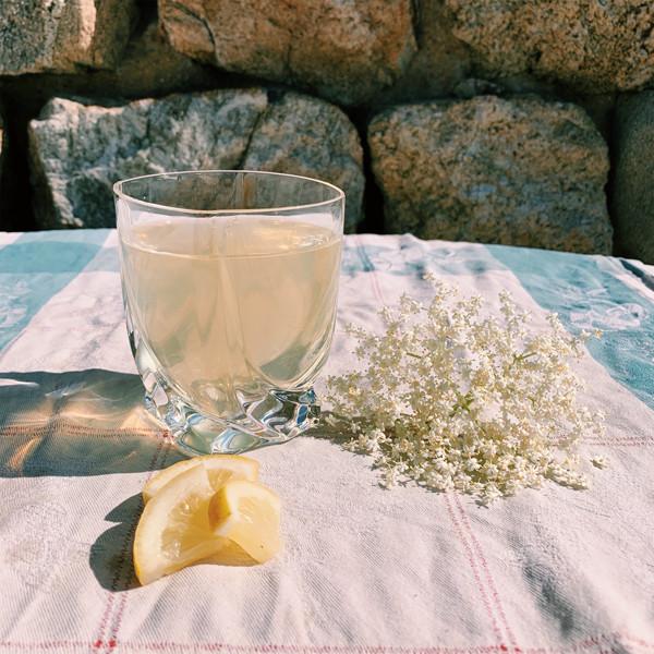 Sirop de sureau : recette facile à faire chez soi