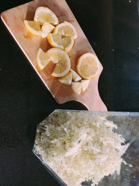 Citron et fleurs de sureau