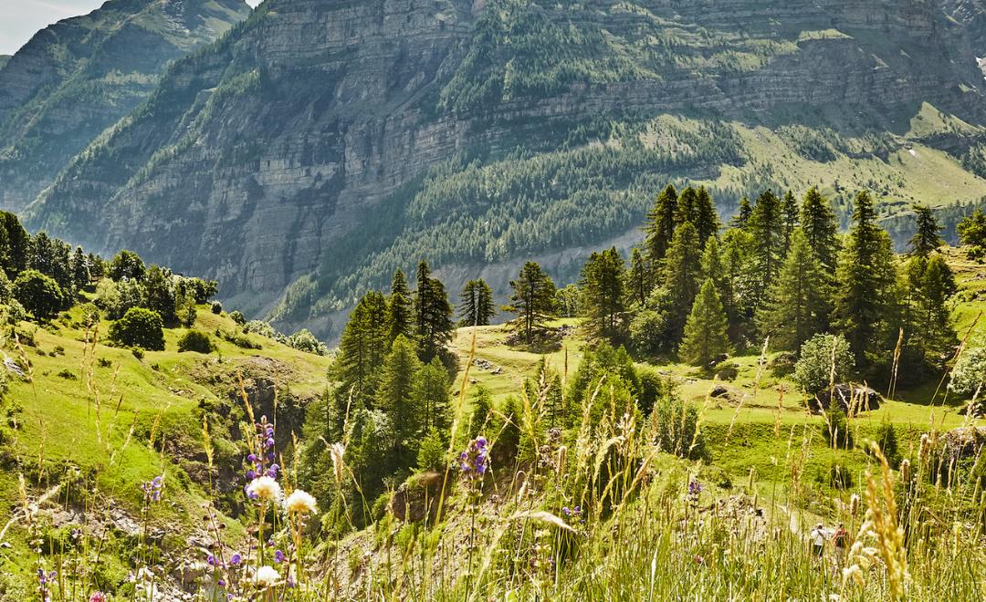 Randonnée dans les Hautes-Alpes : un avant-goût de paradis