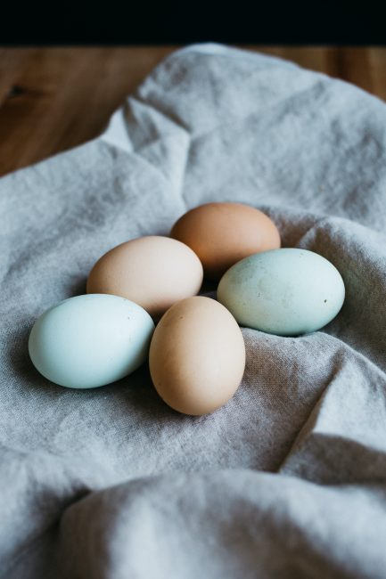 5 bonnes raisons d'adopter des poules