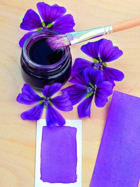 Comment faire sa peinture végétale maison