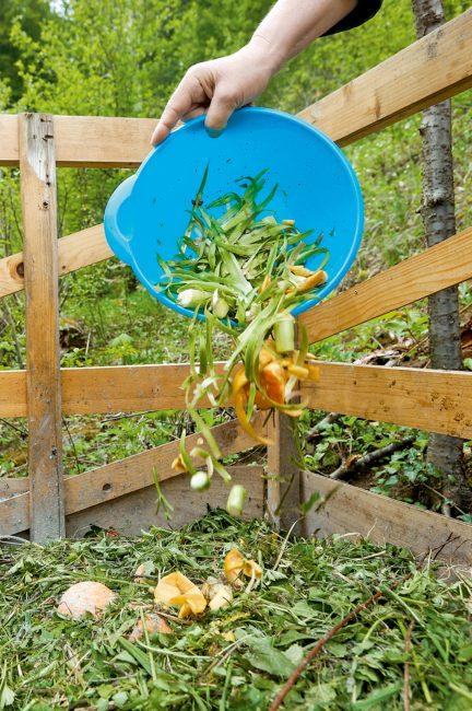 La permaculture : tout savoir sur la méthode de culture qui monte