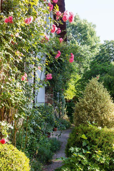 Jardin au naturel : un véritable hymne de campagne