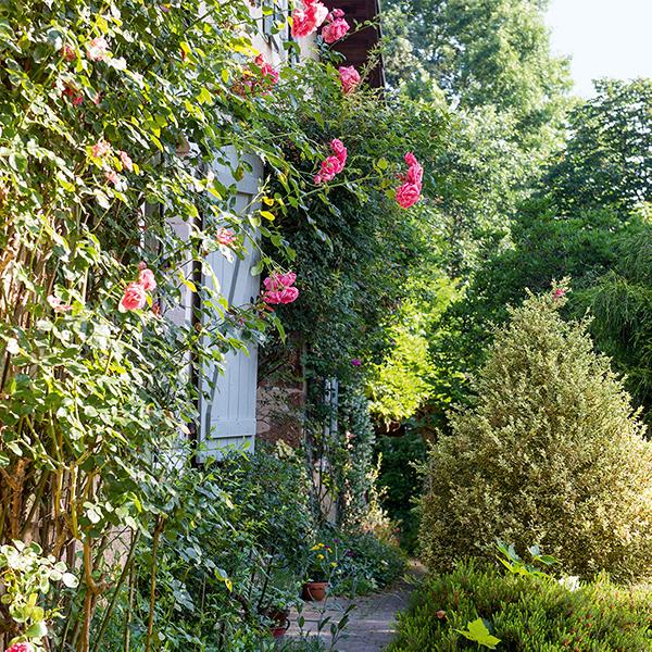 Jardin au naturel : un véritable hymne à la campagne
