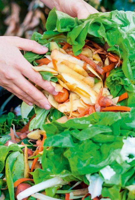 Comment réussir son compost ?
