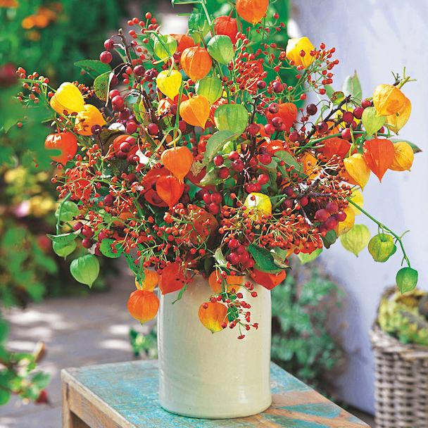7 idées de décoration pour l'automne