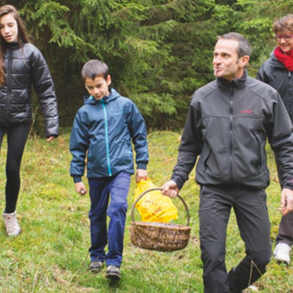 Cueillette en forêt : à la découverte des champignons